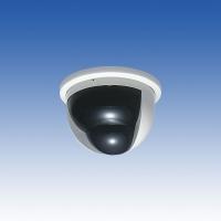 TAKEX センサー付きカプセルカメラ PVC-451 白黒