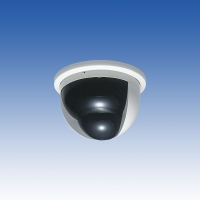 TAKEX センサー付きカプセルカメラ PVC-461 カラー